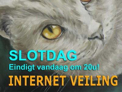 website-veiling