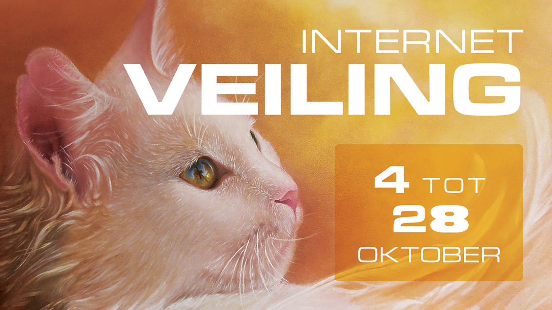 CAT_veiling_1920x1080 copy