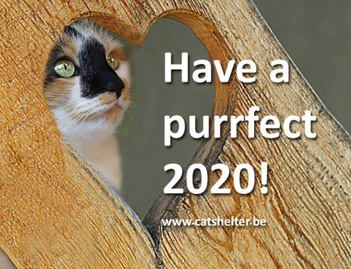 Beste wensen 2020!